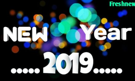 Story of Happy New Year : Blog