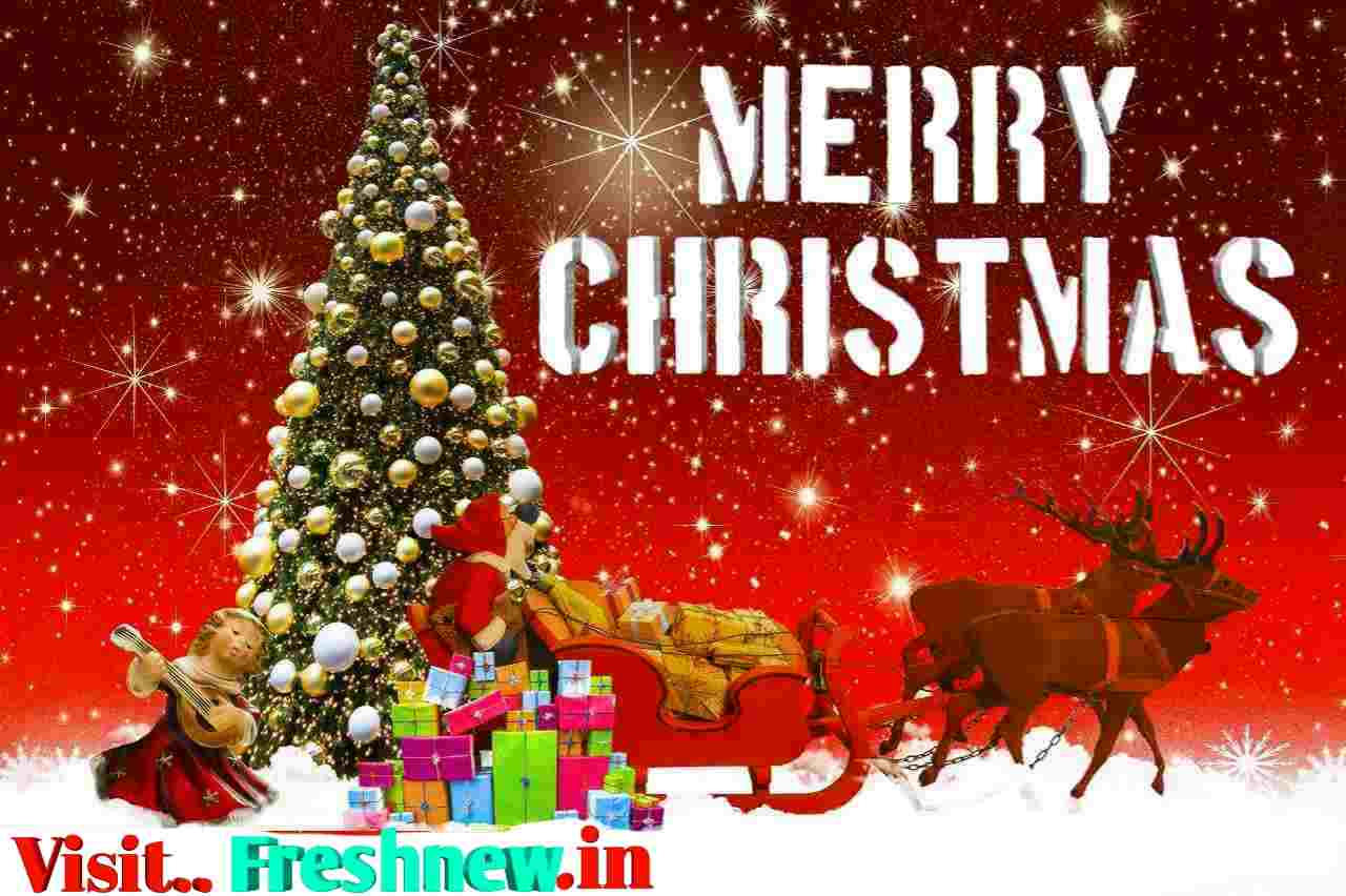 Merry Christmas 2018 Wises, Quotes, Gifts, Images, Vectors, Cards, Story, Xmas Tree: Fresh News INdia