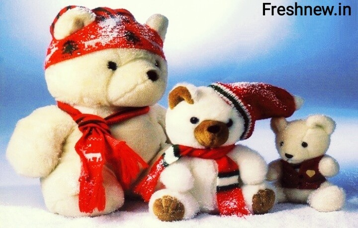 Happy Teddy day 2019 image